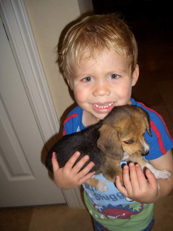 Braxton holding Chandler when he was a puppy