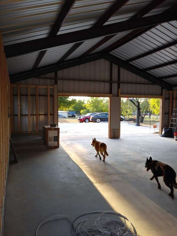 Our German shepherds checking in on the construction progress.